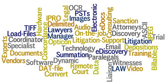 The Tools You Need for Litigation Management - Podcast with Amy Bowser-Rollins